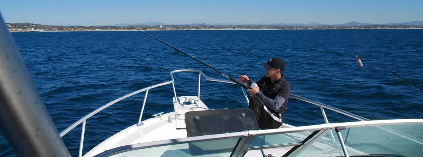 Sail San Diego Sailing Whale Watching Fishing Charters